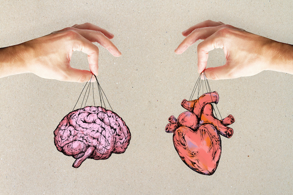 Broken heart syndrome: Some people are unable to process prolonged stress due to abnormalities in some brain regions that control autonomic functions including the heartbeat
